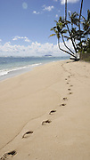 Kaaawa Beach Park, Oahu, Hawaii, shadow