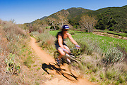 Mountain biker on the Coyote Trail in Sycamore Canyon, Point Mugu State Park, Santa Monica Mountains National Recreation Area, California