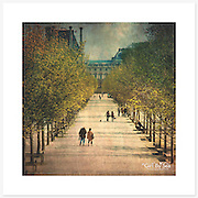 Jardin des Tuileries, Paris, France - Colour version. Inkjet pigment print on Canson Infinity Rag Photographique 310gsm 100% cotton museum grade Fine Art and photo paper.<br /> <br /> 8x8&quot; Prints: First print $49. Additional prints in same order $29. (A half inch white border is added for safe handling. Size with border 9x9&rdquo;).<br /> <br /> Frame-Ready Prints: Add $29 per print. Includes mounting on 12x12&rdquo; foam-board, plus white matboard with 8x8&rdquo; photo opening. Suits standard 12x12&rdquo; frames.<br /> <br /> Price includes GST &amp; postage within Australia. <br /> <br /> Order by email to orders@girtbyseaphotography.com  quoting image title or reference number, your contact details, delivery address &amp; preferred payment method (PayPal or Bank Deposit). You will be invoiced by return email. Normally ships within 7 days of payment.