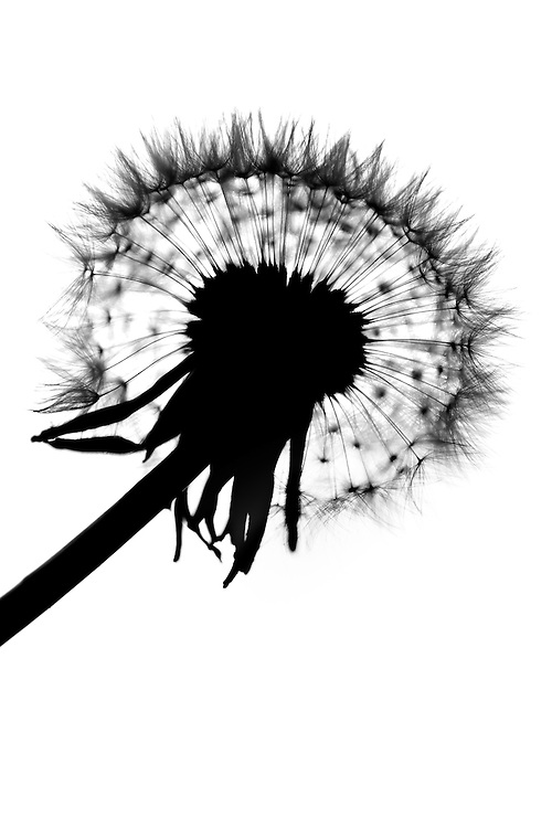 Time is a Ticking'...<br />