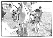 Hampton Classic 1992© Copyright Photograph by Dafydd Jones 66 Stockwell Park Rd. London SW9 0DA Tel 020 7733 0108 www.dafjones.com