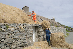 Thatching roof of traditional cottage at Gearrannan blackhouse village on Isle of Lewis in Outer Hebrides Scotland United Kingdom