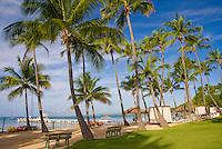 Palm trees of this Caribbean beach (Copamarina Resort)
