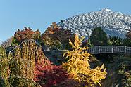 Vancouver's Queen Elizabeth Park