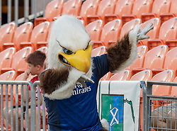 June 16, 2018 - Houston, Texas, US - The USA Men's Eagles mascot during the Emirates Summer Series 2018 match between USA Men's Team vs Scotland Men's Team at BBVA Compass Stadium, Houston, Texas (Credit Image: © Maria Lysaker via ZUMA Wire)