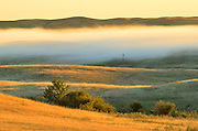 Fog rising over the prairie at sunrise<br /> Beechy<br /> Saskatchewan<br /> Canada