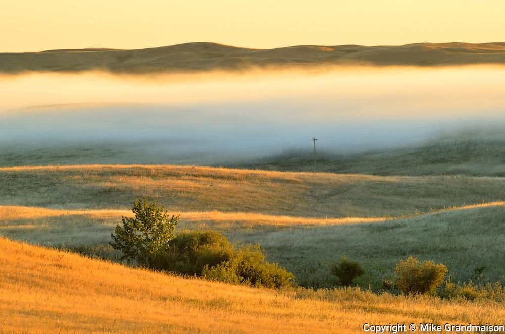 Fog rising over the prairie at sunrise<br /> Beechy<br /> Saskatchewan<br /> Canada