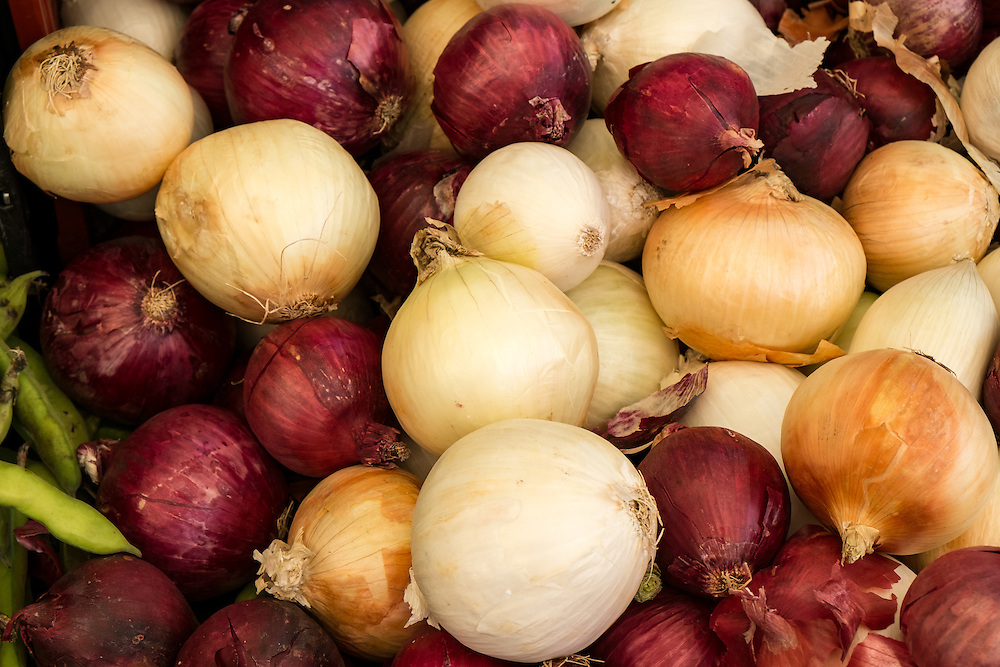Onions at the Farmers Market | June 30, 2013