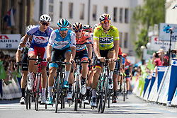 Peloton and Pascal Ackermann (GER) of Bora - Hansgrohe during 2nd Stage of 26th Tour of Slovenia 2019 cycling race between Maribor and Celje (146,3 km), on June 20, 2019 in Slovenia.. Photo by Matic Klansek Velej / Sportida