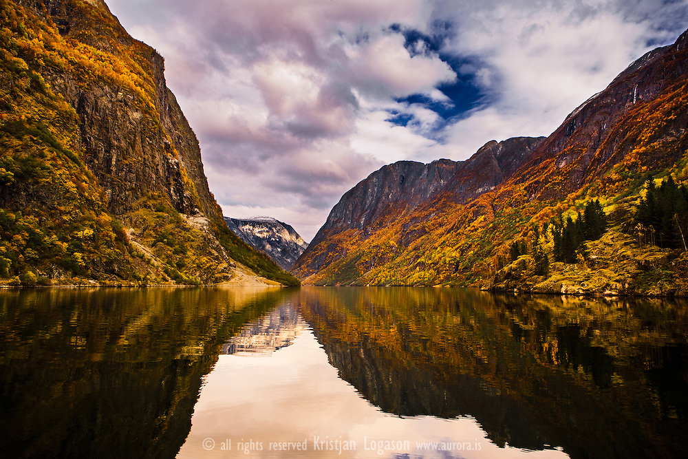 Autumn view out the narrow and closed fjord of Gudvangen in Norway..Gudvangen is a village in the municipality of Aurland in Sogn og Fjordane county, Norway. It is a popular tourist destination and is located at the end of the Nærøyfjord where the Nærøydalselvi river empties into the fjord...The Nærøyfjord, a branch of the Sognefjord, has been included in Unesco's World Heritage list and is considered to be among the most scenic fjord areas on the planet. Its outstanding natural beauty is derived from its narrow and steep-sided crystalline rock walls that rises up to 1400m straight from the fjord.