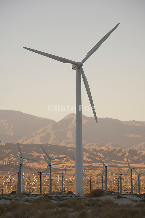 field of wind turbines outside Palm springs California USA