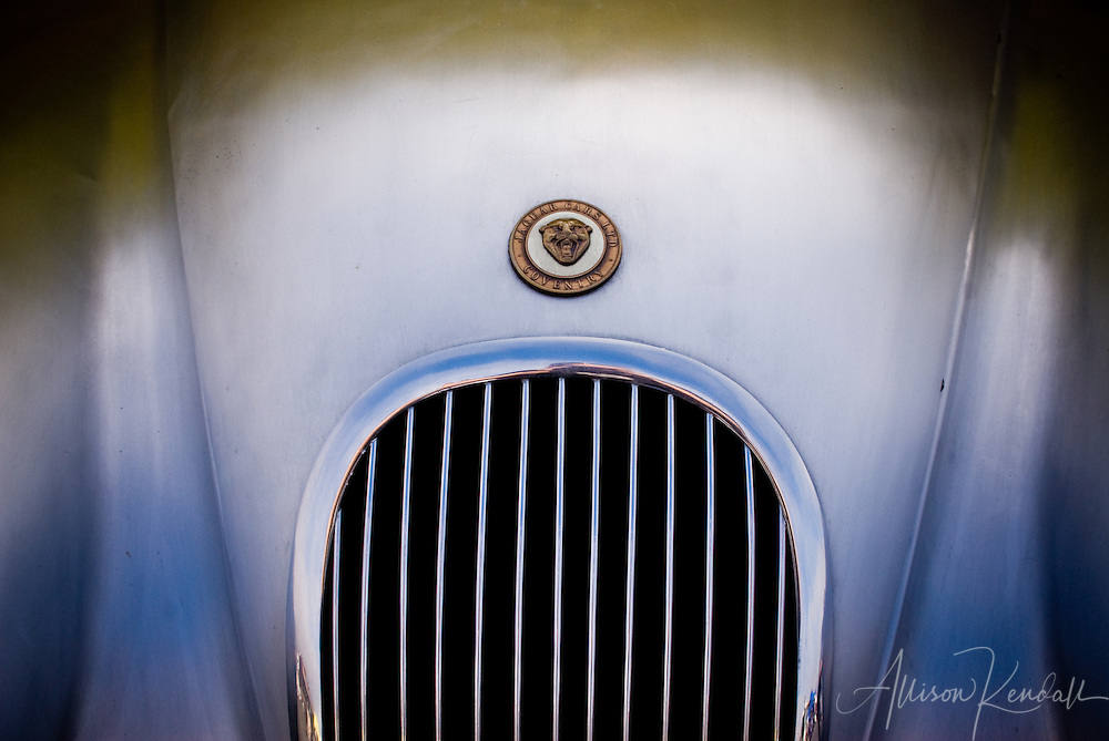 The gleaming front grill of a classic jaguar is accented by soft matte silver curves of the vintage automobile body.