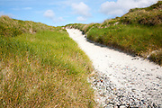Sandy path through vegetated sand dunes on Vatersay, Barra, Outer Hebrides, Scotland, UK