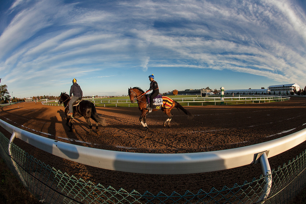 October 29, 2015:   Karakontie (JPN), trained by Jonathan E. Pease and owned by Flaxman Holdings Limited, exercises in preparation for the Breeders' Cup Mile at Keeneland Race Track in Lexington, Kentucky. Alex Evers/ESW/CSM