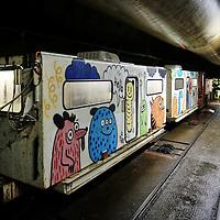 """Nella fotografia: l'opera di Laurina Paperina  sui vagoni del convoglio per il trasporto all'interno della galleria. CHIOMONTE (TORINO) -10 ottobre 2016 - inaugurazione di """"Tunnel Art Work"""", primo progetto internazionale di arte nella galleria geognostica in cantiere della linea ferroviaria Tav Torino Lione."""