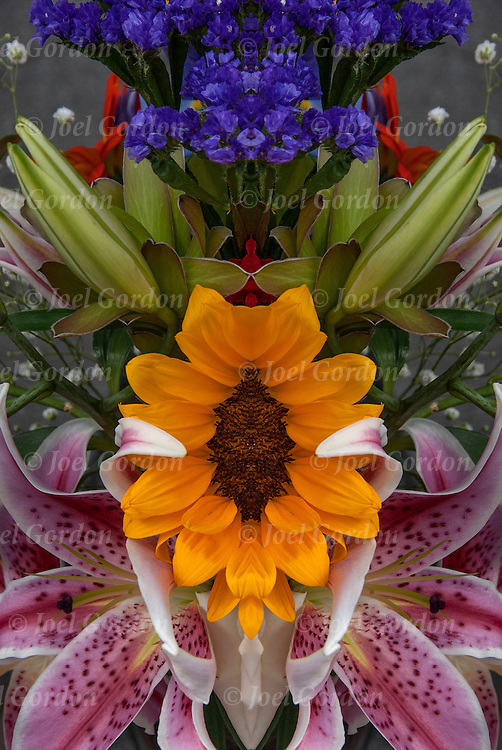 Photographic series of digital  flower computer art.<br /> <br /> Two or more layers used to enhance, alter and manipulate the image, creating an abstract surrealistic mirrored symmetry.