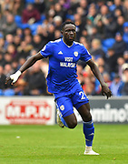 Oumar Niasse (29) of Cardiff City during the Premier League match between Cardiff City and Chelsea at the Cardiff City Stadium, Cardiff, Wales on 31 March 2019.