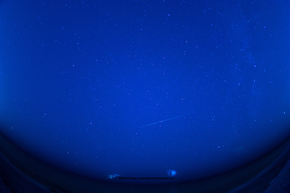 Perseid Meteor Shower, Gulf of Mexico, Florida