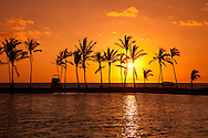 Anaehoomalu Bay at sunset, silhouette of palm trees against orange sky, Waikoloa, Big Island, Hawaii
