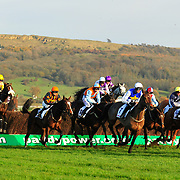 Cheltenham Open Meeting 11/12-14/2010