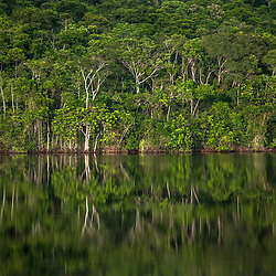 """Floresta e Lagoa (paisagem) fotografado em Cariacica, Espírito Santo -  Sudeste do Brasil. Bioma Mata Atlântica. Registro feito em 2012.<br /> <br /> <br /> <br /> ENGLISH: Forest e Lagoon photographed in the city of Cariacica, Espírito Santo - Southeast of Brazil. Atlantic Forest Biome. Picture made in 2012."""