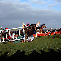 The shadows of the racing punters spill out onto the course at the 2007 Bellhabour Point to Point on Sunday.<br />