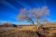 New Mexico, Bosque Del Apache NWR