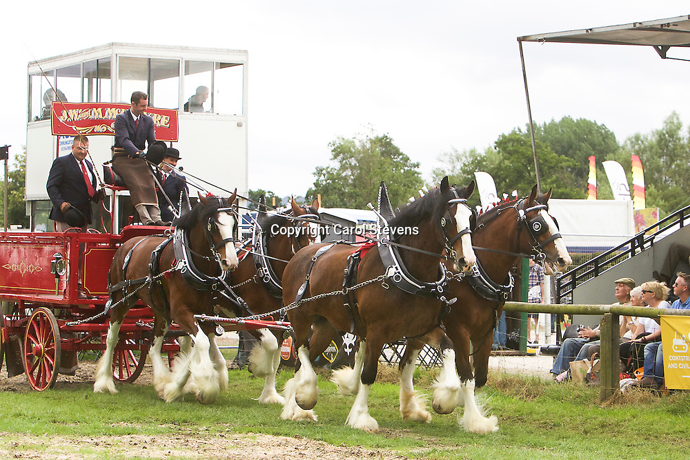 Ronald Brewster driving JW &amp; M McIntyre's Clydesdales, Connie and Vicki<br />
