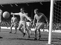 Fotball <br />