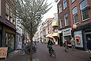 Street cyclist Delft, Netherlands