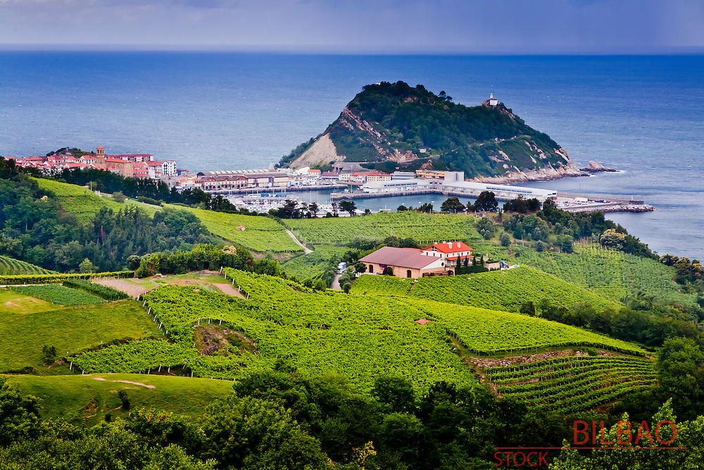 Village view and txakoli crop on mountain hills.<br /> Getaria, Guipuzkoa. Basque Country, Spain.