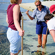 A ranger leads a nature reef walk in the lagoon at Lady Elliot Island showing a giant clam at their feet.