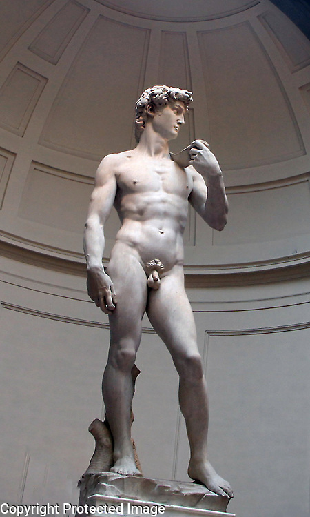 David, a magnificent sculpure by Renaissance artist Michelangelo is shown in natural lighting.