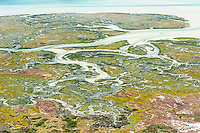 Aerial view of the Langebaan Lagoon and salt marshes within the West Coast National Park, Western Cape, South Africa