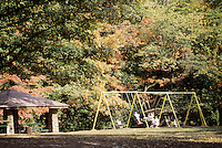 Mt Airy Forest Family Swingset