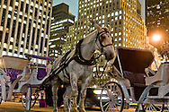 = horse cars, Grand army plaza and fifth avenue, New York, Manhattan - United states  NYC56997 /// caleches sur Grand army plaza et la cinquieme avenue, , Manhattan, New York - Etats-unis  +