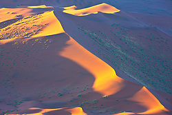 An aerial of a sand dune enhanced by evening light , near Sossusvlei, Namibia