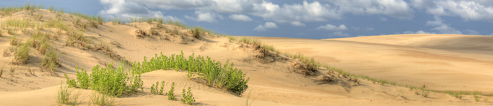 Jockey' s Ridge is the tallest natural sand dune system in the <br /> Eastern United States. Located in Nags Head, it is one of the <br /> most significant landmarks on the Outer Banks, North Carolina.