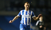 Brighton midfielder Steve Sidwell (36) during the Sky Bet Championship match between Brighton and Hove Albion and Brentford at the American Express Community Stadium, Brighton and Hove, England on 5 February 2016.