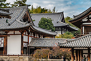 Horyuji Temple was founded in 607 by Prince Shotoku, an early promoter of Buddhism in Japan. Horyuji is one of the country's oldest temples and contains the world's oldest surviving wooden structures. It was designated a UNESCO World Heritage Site in 1993. Horyu-ji is in Nara Prefecture, Japan.