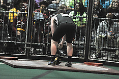 D1M Weight Throw