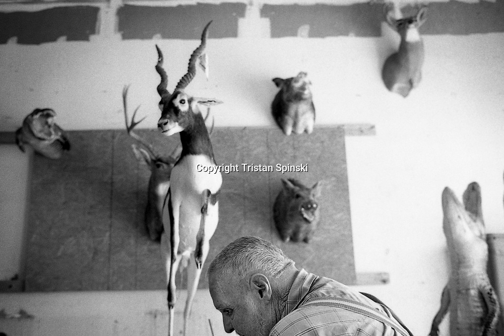 Taxidermist shop, Okeechobee, Florida, 2012.