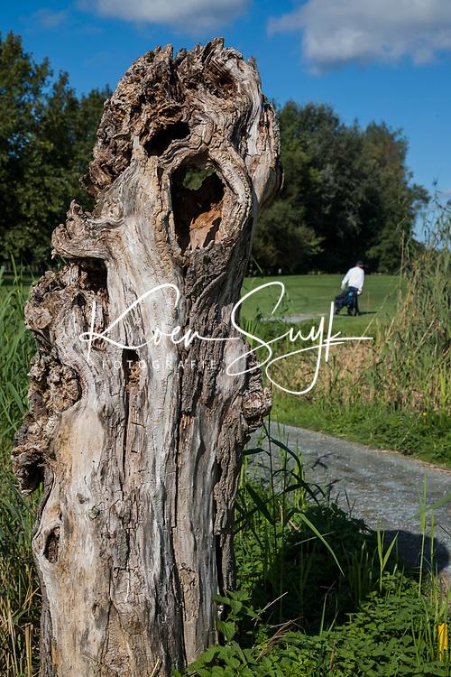 ELST - Hole 8, Golfbaan Landgoed Welderen. COPYRIGHT  KOEN SUYK