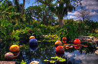 "Dale Chihuly 2007 Exhibition in Fairchild Tropical Gardens In Miami, Chihuly call this ""NIIJIma Floats"", Dale Chihuly is recognized artist for his work with glass."