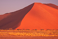 Africa, Southern, African, Namibia,  Namib-Naukluft National Park, Hardap Region, Sossusvlei