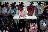 El perro es uno de los animales domésticos más antiguos del mundo. Su domesticación comenzó cuando apenas era un pariente salvaje de los actuales lobos. Toda la especie se refiere a la raza doméstica (Canis familiaris). Es posible que la domesticación del perro empezara más por la adaptación espontánea de éste al acercarse a vivir junto al hombre que por la voluntad humana.......