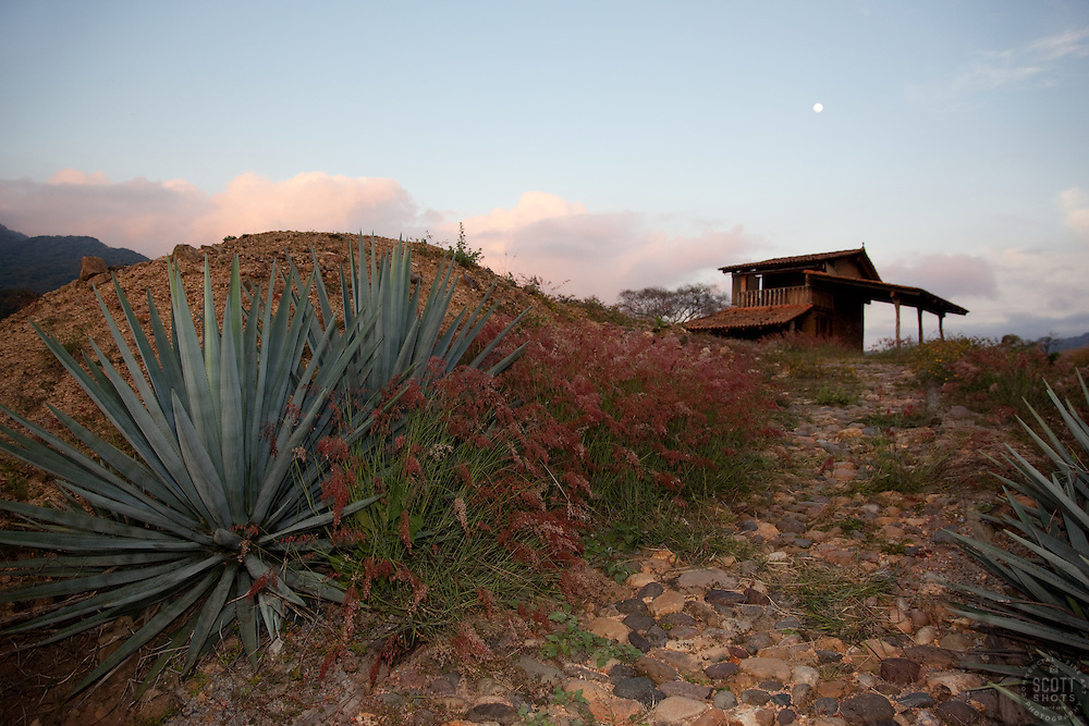 """""""Agave Sunset"""" - This sunset, moon and agave plant were photographed at Parador San Sebastian, Mexico."""