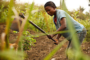 Patience Nsona plows her field in the village of Kinsiesi, Bas-Congo province, Democratic Republic of Congo on Saturday June 18, 2011.