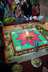 "© under license to London News pictures.  06/11/2010.Celebrations for Diwali, the Hindu new year, at Gokul Centre for Cow Protection and Working Oxen in Aldenham near Watford, Hertfordshire today (Sat). The centre, which was originally donated by George Harrison, is unique in the western world producing ""Ahimsa Milk"" at a cost of £3 per litre without harm to any living being. The Centre is part of Bhaktivedanta Manor, a Hindu place of worship."