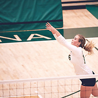 2nd year outside hitter, Brittany Rousseaux (16) of the Regina Cougars during the Women's Volleyball pre-season game on Sat Sep 22 at Centre for Kinesiology, Health & Sport. Credit: Arthur Ward/Arthur Images